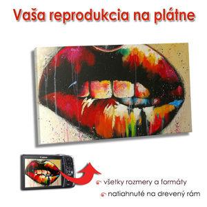 Reprodukcia na plátne - OBDĹŽNIK (fotoreprodukcia na plátne)