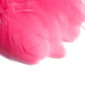 Dekoračné pierka 190 ks / dark pink (kreatívne potreby)